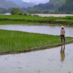 Vietnam – angekommen
