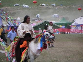 Tibet - geschmückter Schimmel